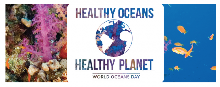 Take Action on World Oceans Day - June 8